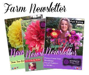 Farm Newsletter graphic