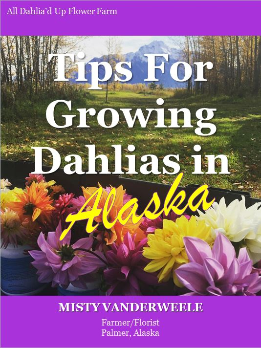 tips-for-growing-dahlias-cover-snip
